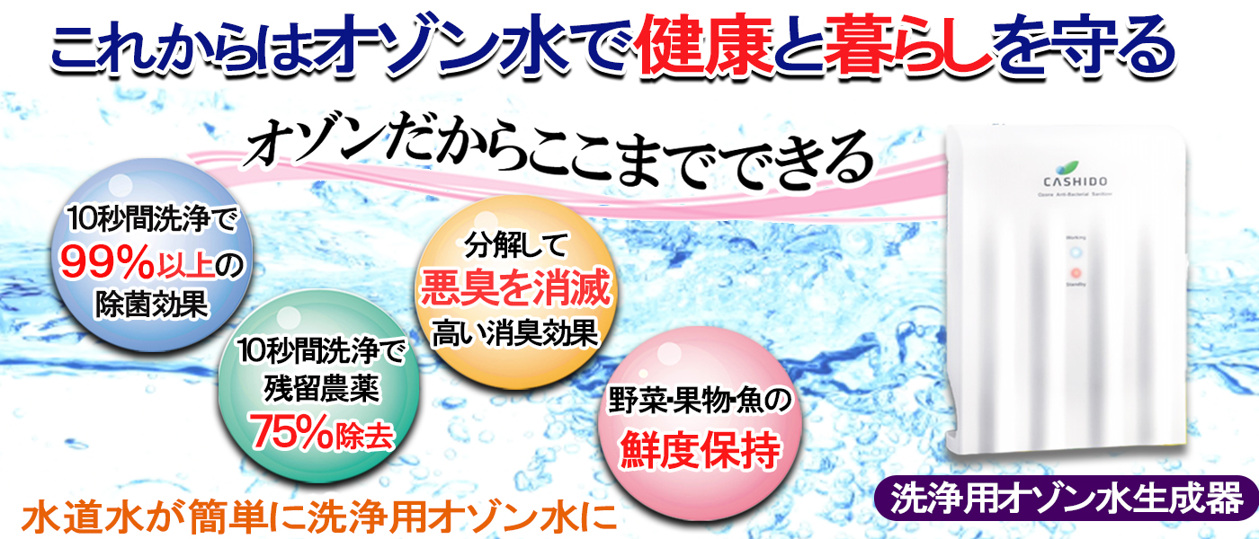 オゾン水生成器,業務用,除菌