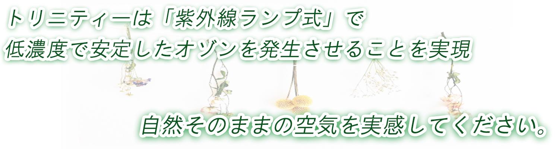 低濃度オゾン,日本製
